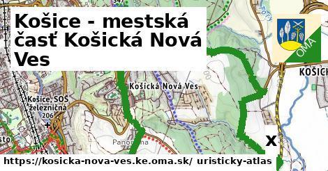 strom v Košice - mestská časť Košická Nová Ves