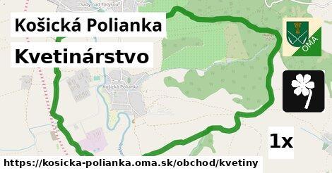 ilustračný obrázok k Kvetinárstvo, Košická Polianka