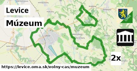 Múzeum, Levice