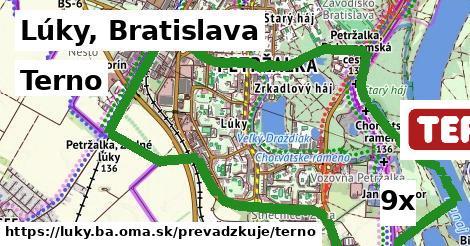 Terno v Lúky, Bratislava
