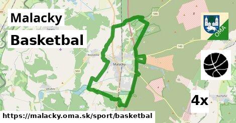 basketbal v Malacky