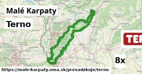 Terno v Malé Karpaty