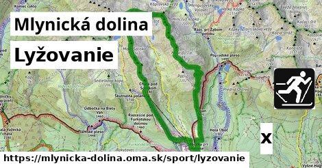 lyžovanie v Mlynická dolina
