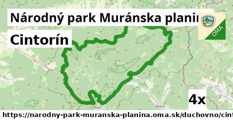 ilustračný obrázok k Cintorín, Národný park Muránska planina