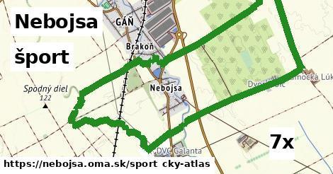 šport v Nebojsa