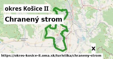 chranený strom v okres Košice II