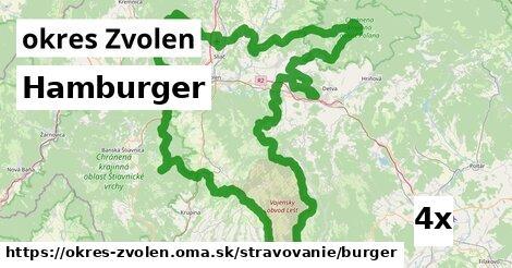 ilustračný obrázok k Hamburger, okres Zvolen
