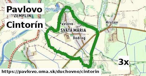 ilustračný obrázok k Cintorín, Pavlovo