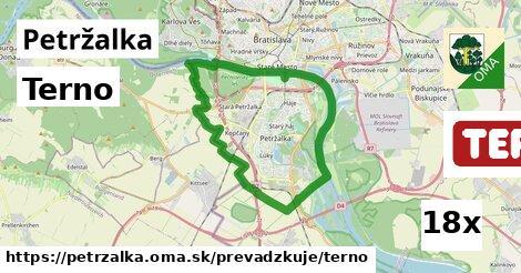 Terno v Petržalka