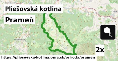 ilustračný obrázok k Prameň, Pliešovská kotlina