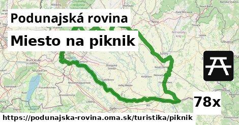 ilustračný obrázok k Miesto na piknik, Podunajská rovina