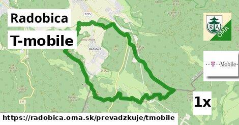 ilustračný obrázok k T-mobile, Radobica
