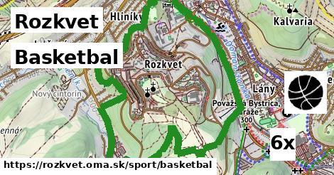 basketbal v Rozkvet