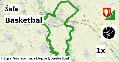 ilustračný obrázok k Basketbal, Šaľa