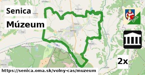 Múzeum, Senica