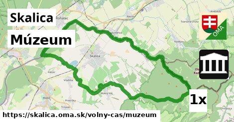 Múzeum, Skalica