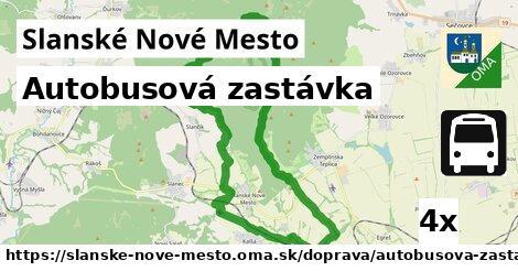 ilustračný obrázok k Autobusová zastávka, Slanské Nové Mesto