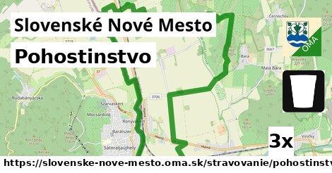 pohostinstvo v Slovenské Nové Mesto