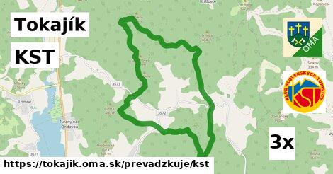 ilustračný obrázok k KST, Tokajík