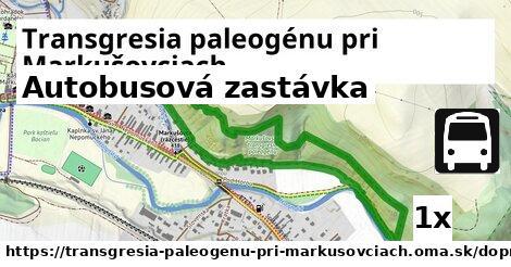 ilustračný obrázok k Autobusová zastávka, Transgresia paleogénu pri Markušovciach