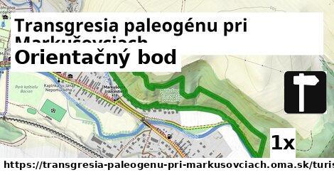 ilustračný obrázok k Orientačný bod, Transgresia paleogénu pri Markušovciach