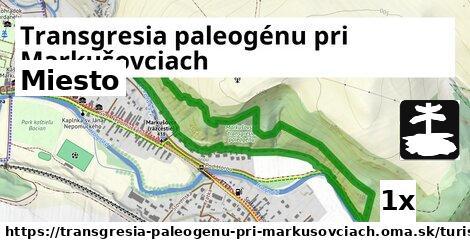 ilustračný obrázok k Miesto, Transgresia paleogénu pri Markušovciach