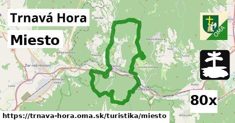 ilustračný obrázok k Miesto, Trnavá Hora