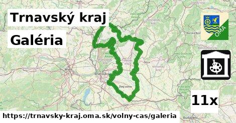 ilustračný obrázok k Galéria, Trnavský kraj