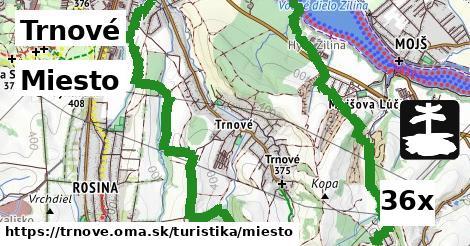 ilustračný obrázok k Miesto, Trnové