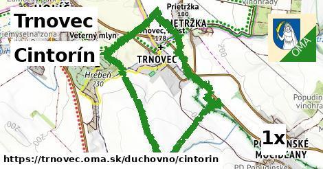 ilustračný obrázok k Cintorín, Trnovec