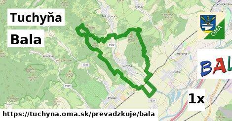 Bala v Tuchyňa