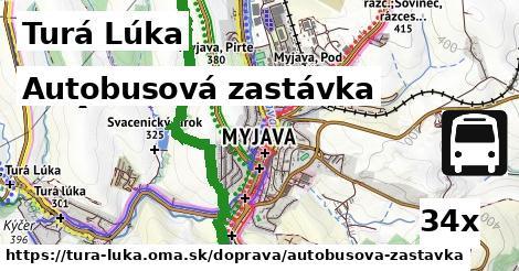 ilustračný obrázok k Autobusová zastávka, Turá Lúka