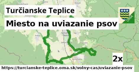 Miesto na uviazanie psov, Turčianske Teplice