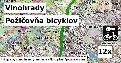ilustračný obrázok k Požičovňa bicyklov, Vinohrady