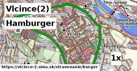 hamburger v Vlcince(2)
