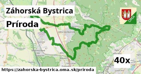 príroda v Záhorská Bystrica