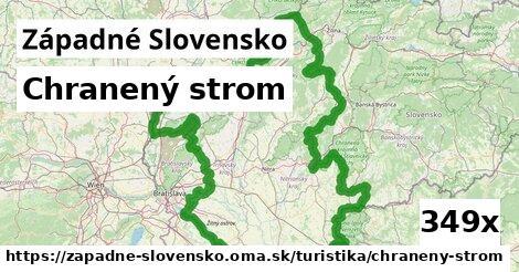 chranený strom v Západné Slovensko
