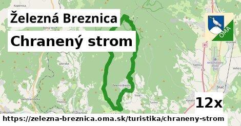 chranený strom v Železná Breznica