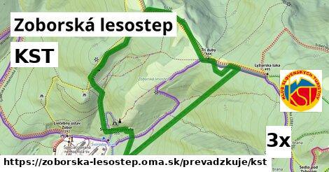 KST v Zoborská lesostep