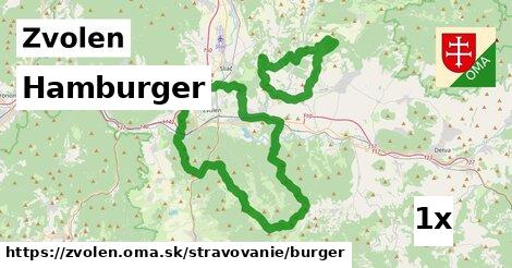 Hamburger, Zvolen
