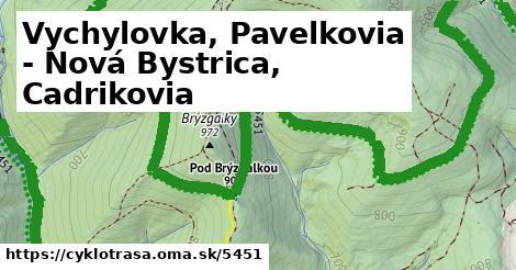 ilustračný obrázok k Vychylovka, Pavelkovia - Nová Bystrica, Cadrikovia
