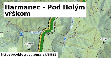 ilustračný obrázok k Harmanec - Pod Holým vŕškom