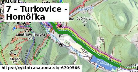 ilustračný obrázok k 7 - Turkovice - Homôľka
