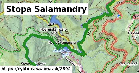 ilustračný obrázok k Stopa Salamandry