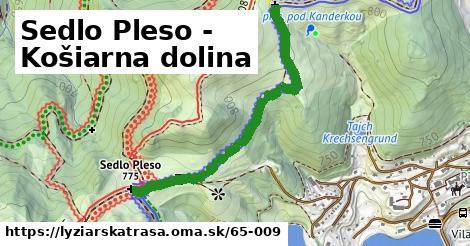 ilustračný obrázok k Sedlo Pleso - Košiarna dolina
