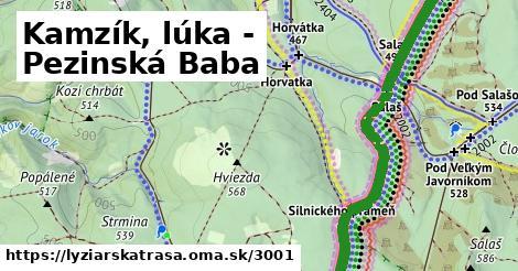 ilustračný obrázok k Kamzík, lúka - Pezinská Baba