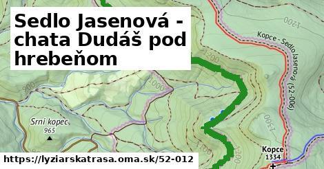 ilustračný obrázok k Sedlo Jasenová - chata Dudáš pod hrebeňom