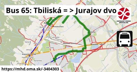 ilustračný obrázok k Bus 65: Tbiliská => Jurajov dvor