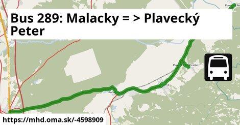 ilustračný obrázok k Bus 289: Malacky => Prievaly