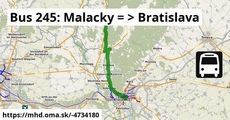 ilustračný obrázok k Bus 245: Malacky => Bratislava